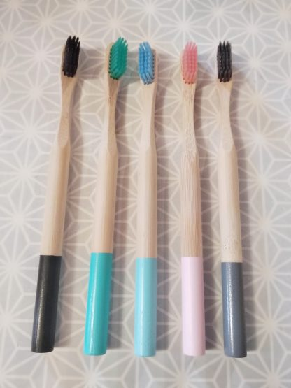 brosses à dents bambou adulte 5 couleurs