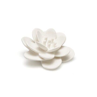 lanco-lotus-bain-bio-mellune